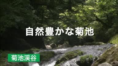 当院紹介ムービー