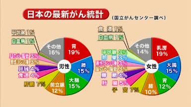 【2013】No3(がんドック)